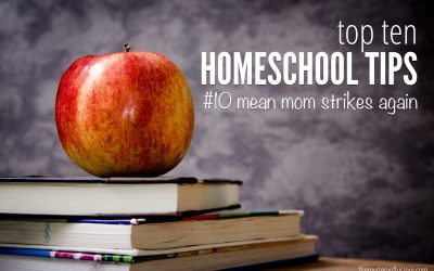 Top Ten Tips for Homeschooling – Mean Mom Strikes Again