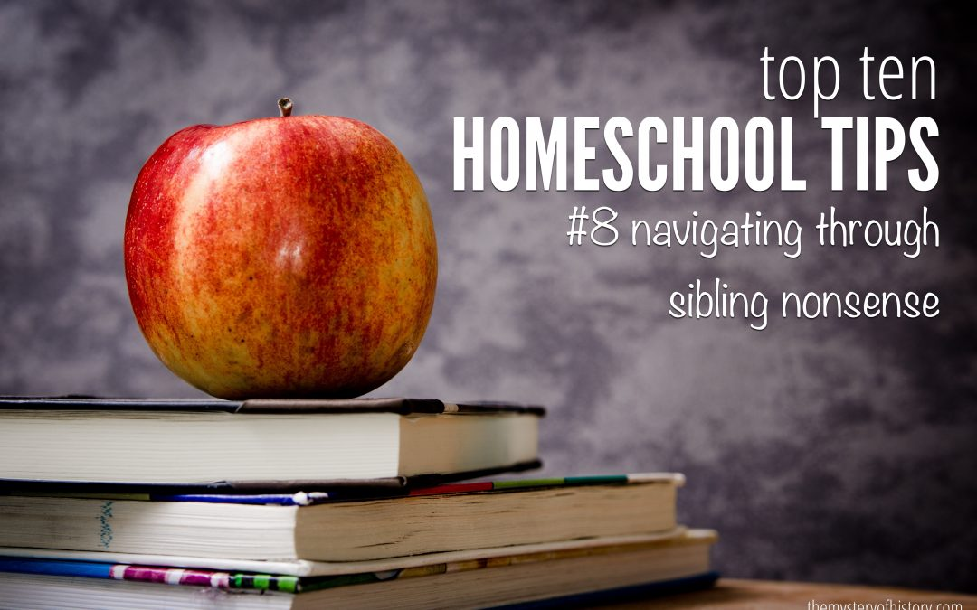 Top Ten Tips for Homeschooling – Navigating Sibling Nonsense