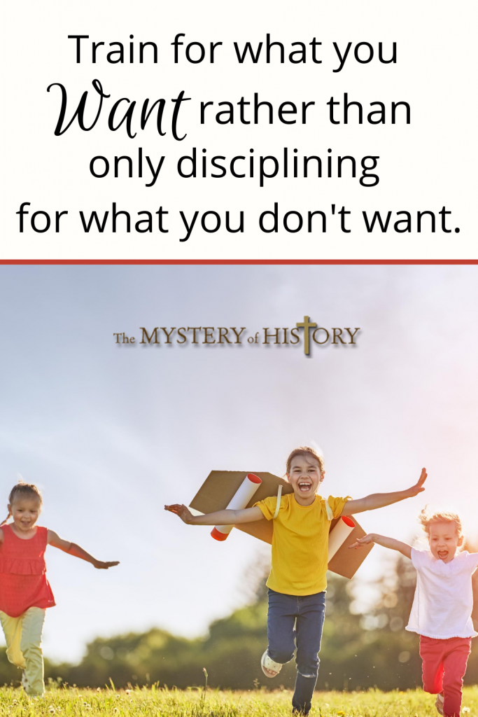 share more of the how-tos of discipline from my own experience, which should help create order in your homeschooling!